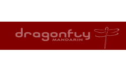 Dragonfly Mandarin  Logo